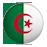 Algieria Nowy Sącz